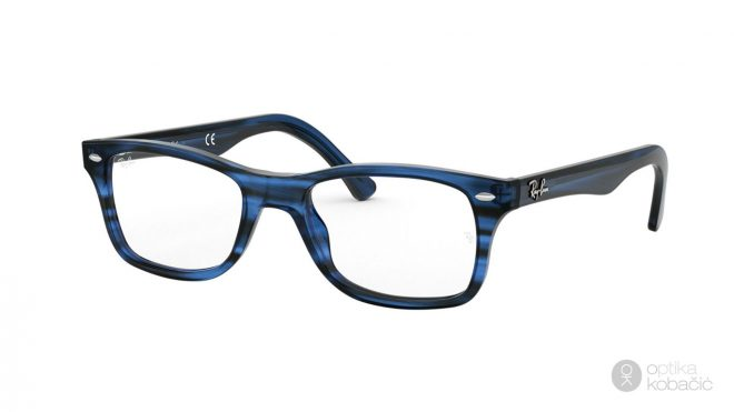 Ray-Ban The Timeless 5228 8053
